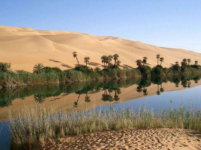 51126d9a9f2db9312d965a9c406cc904--desert-oasis-the-oasis